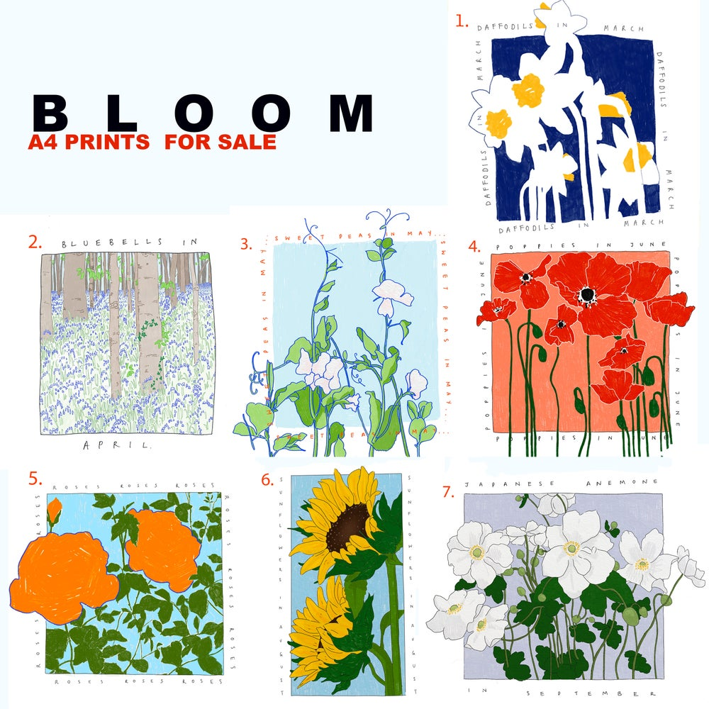 Image of BLOOM A4  Prints