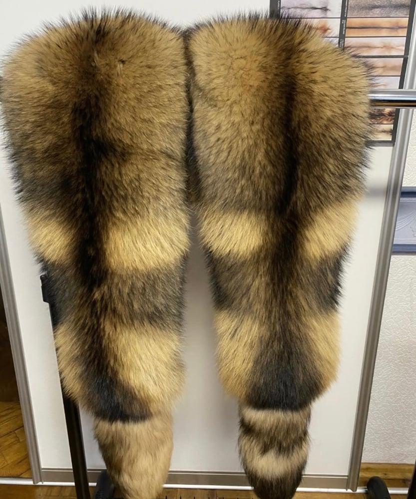 Image of Jumbo Raccoon Boa