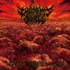 IMPLEMENTS OF HELL - Sea Of Necrophenomena CD