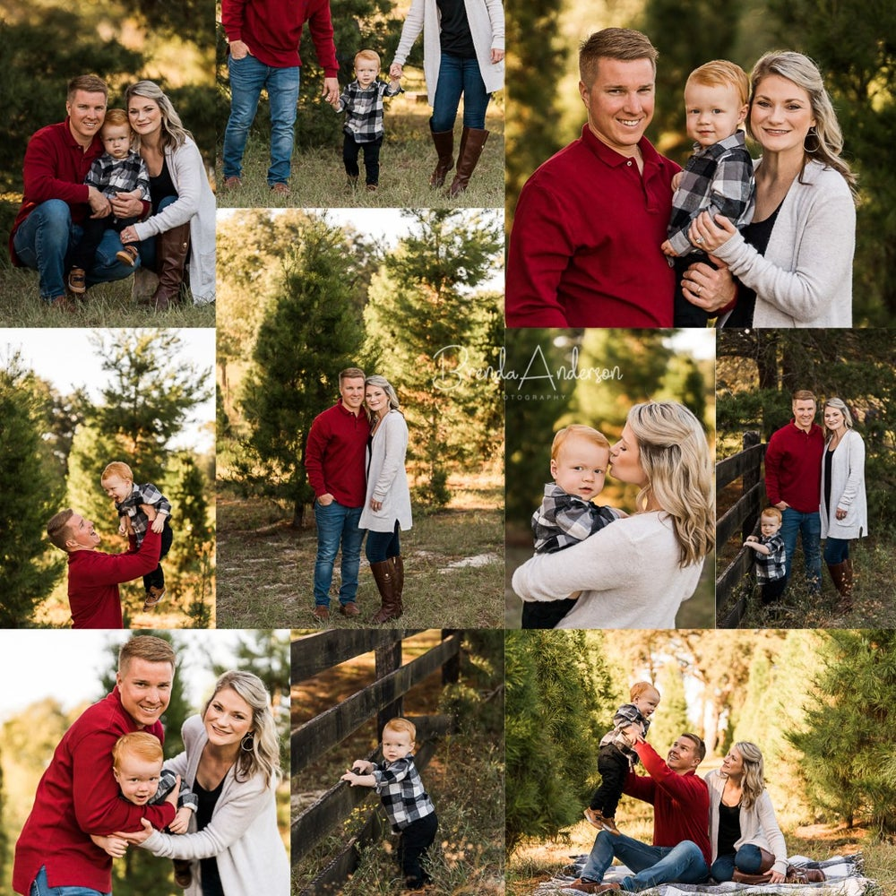 Image of OCTOBER - Christmas Tree Forest Mini Session