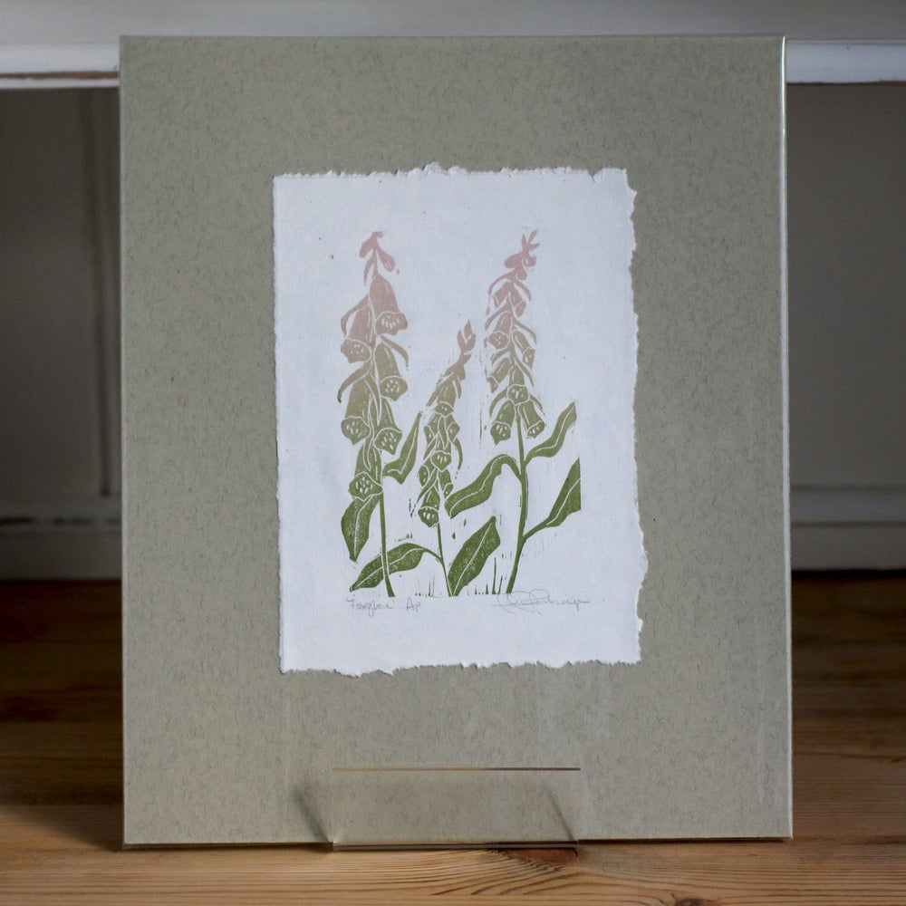 Image of 'Foxgloves' AP