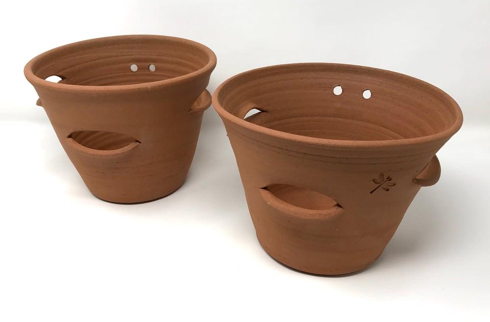 Image of Medium Wall Pocket pot