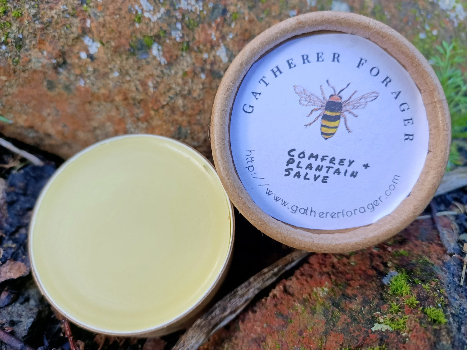 Image of Comfrey and Plantain Bump and bruise salve