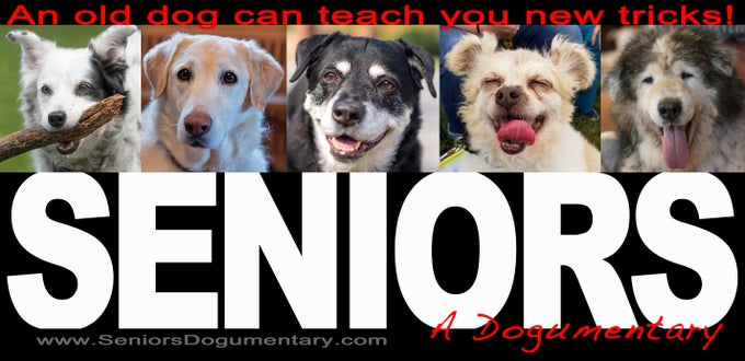 Image of Seniors A Dogumentary bumpersticker