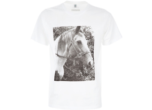 Image of VALERIE PHILLIPS 'HORSE' PRINT T-SHIRT FOR JAGUARSHOES COLLECTIVE