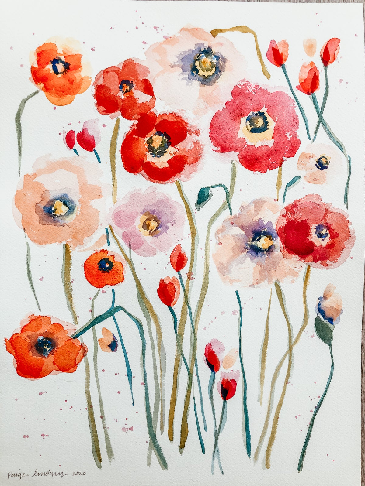 Image of Learn How To Paint Watercolor Wild Poppies