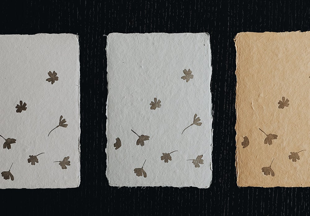 Image of Hanami Cards