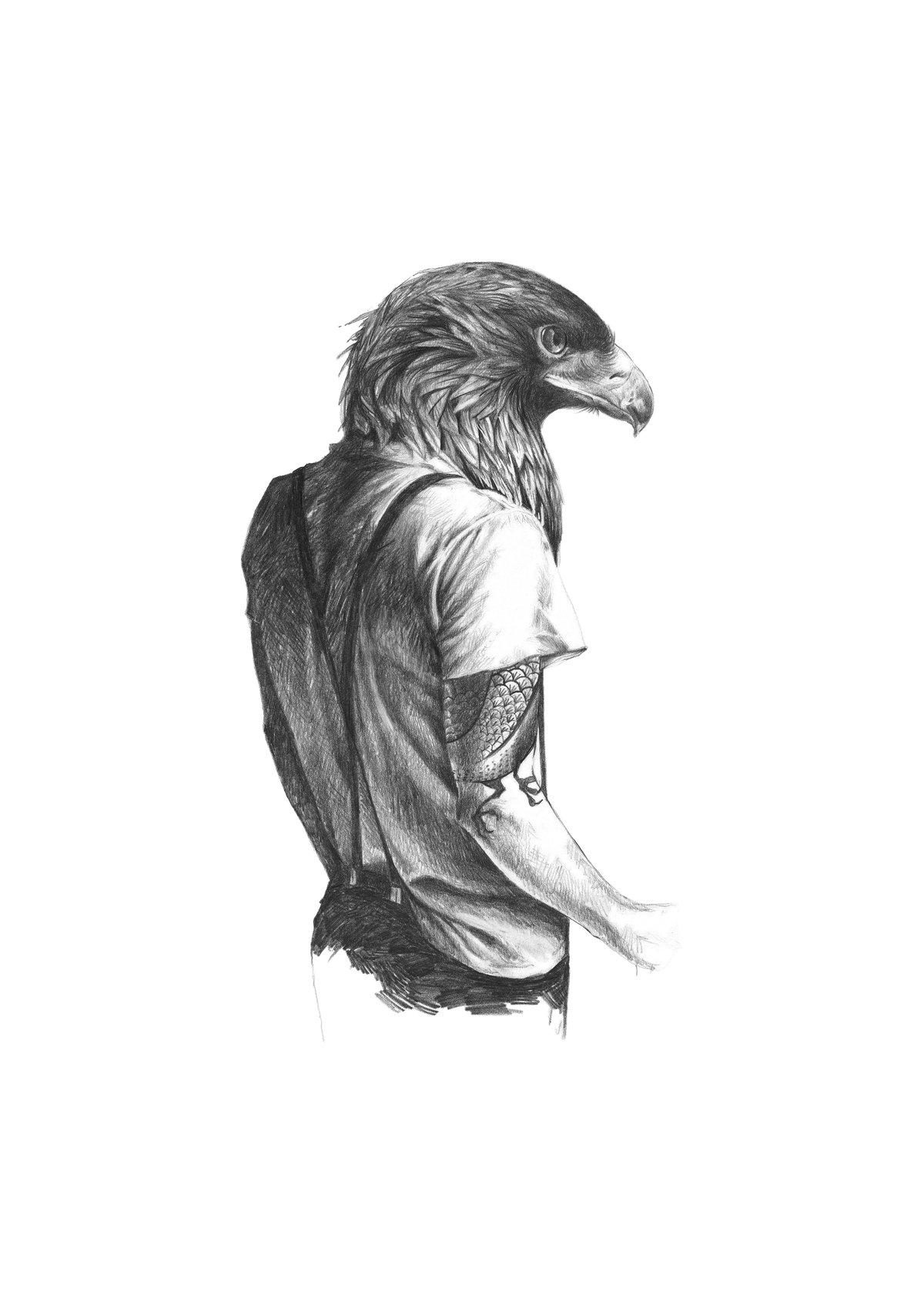 Image of Eagle