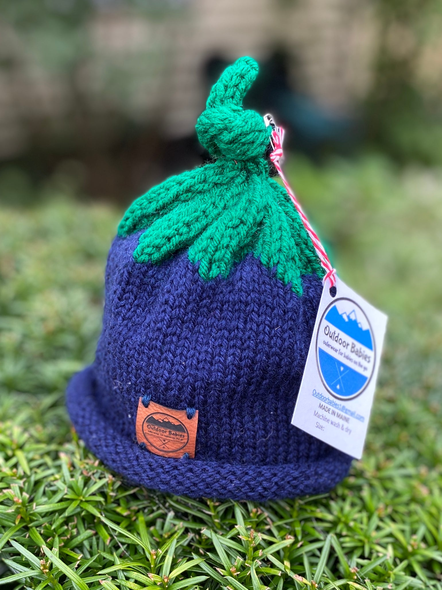 Image of Maine Blueberry Hat