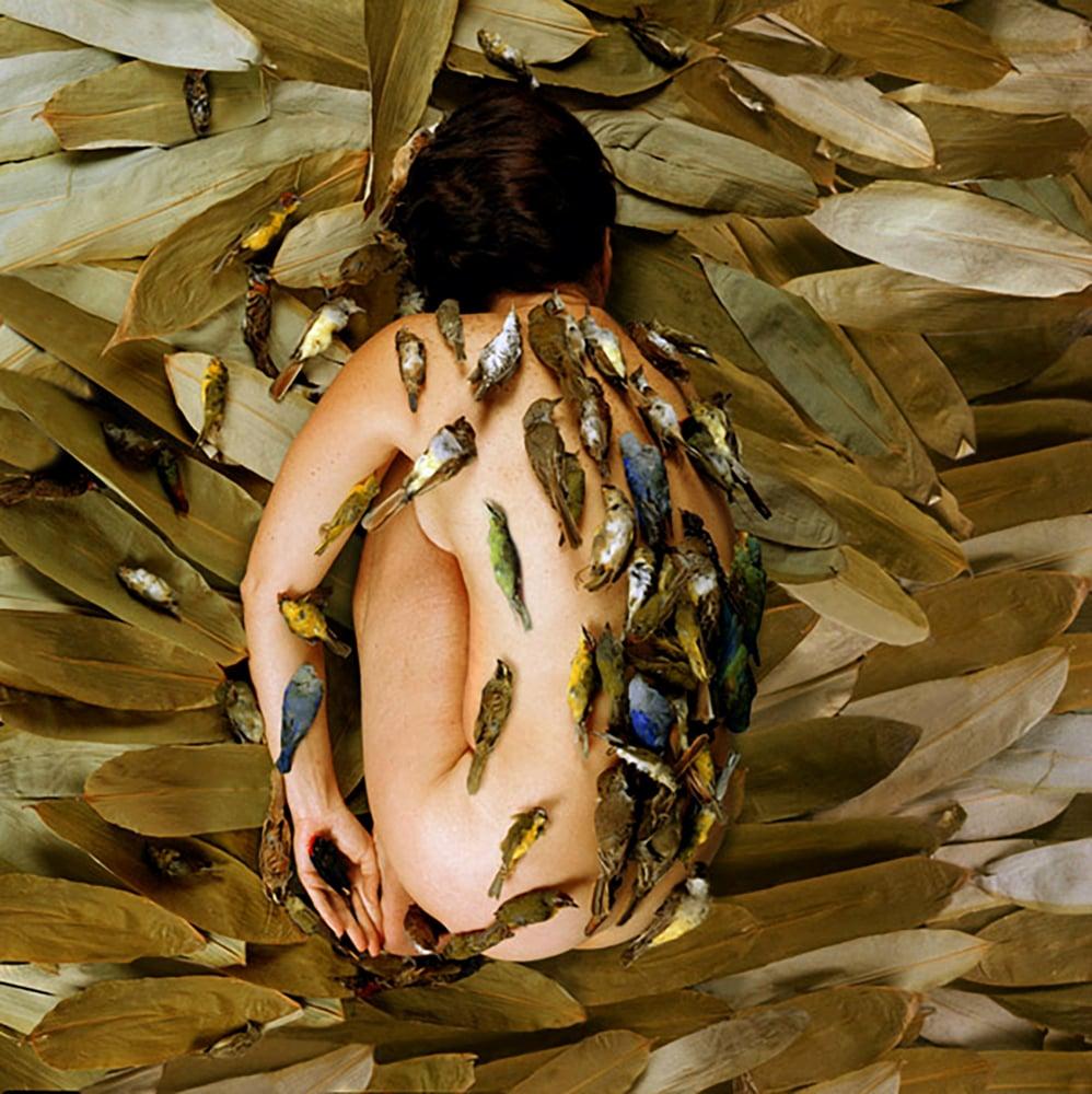 Image of Cecilia Paredes | TRANSFORMATION