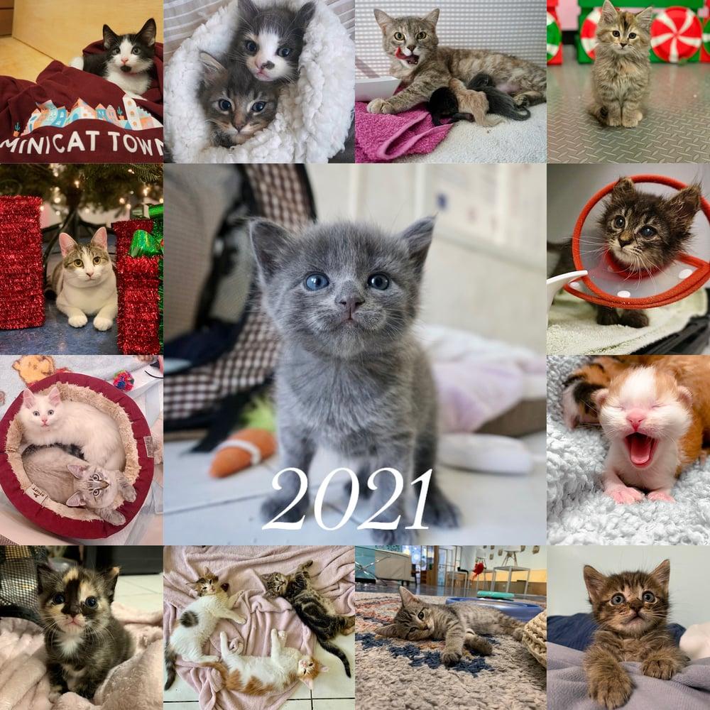 Image of Pre-Order: 2021 Kitten Calendar