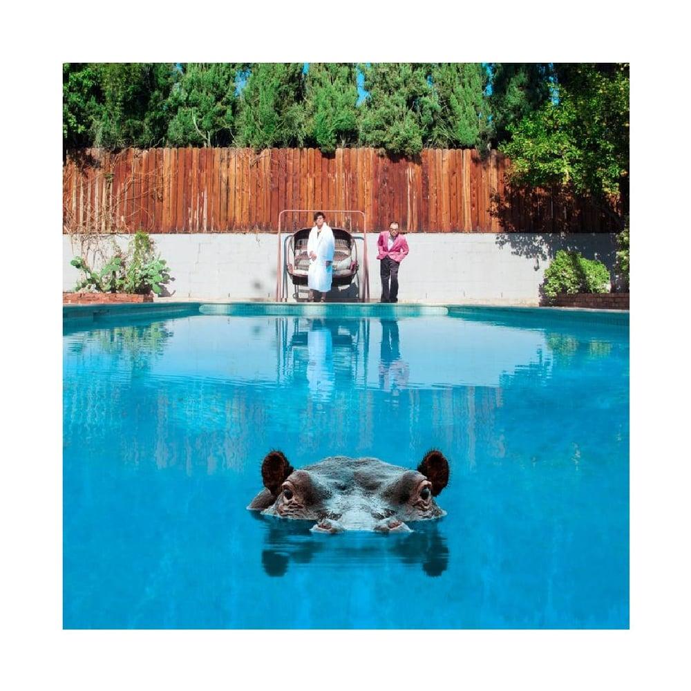 Image of Hippopotamus CD