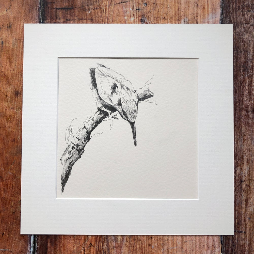 Image of Pitching Kingfisher Graphite Original