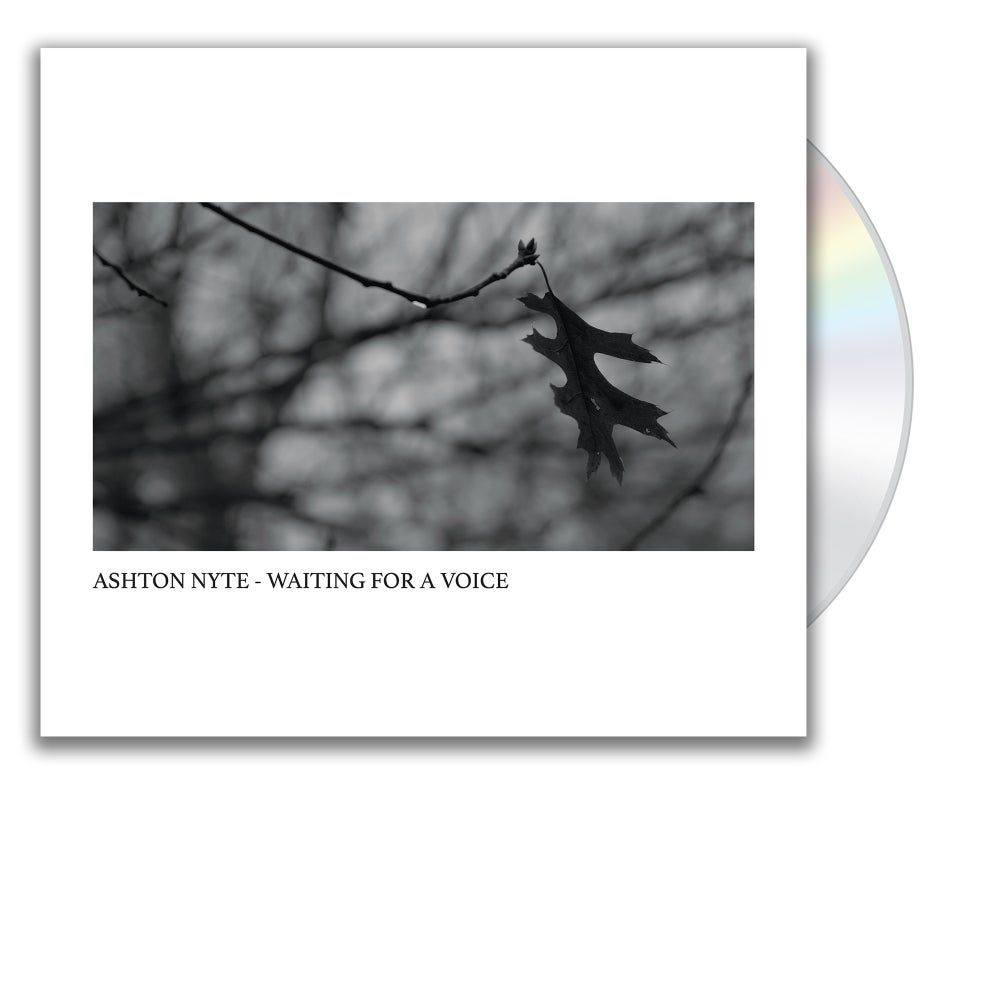 Image of Ashton Nyte - Waiting For A Voice (CD)