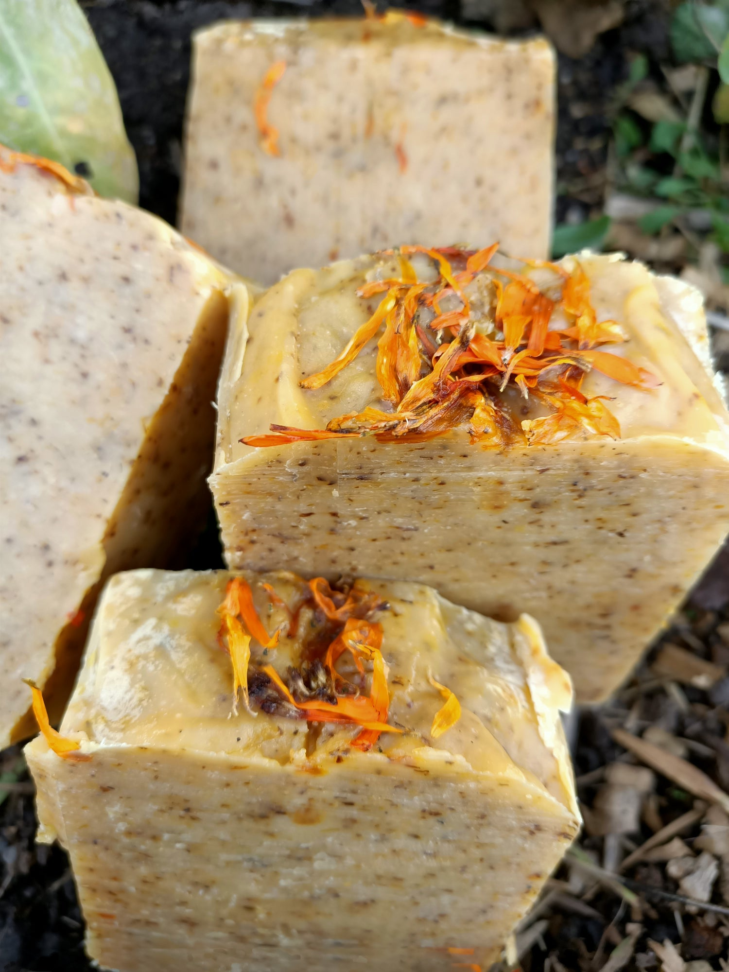 Image of Calendula Beeswax soap