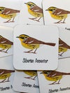 4 Pack Siberian Accentor Coaster Set