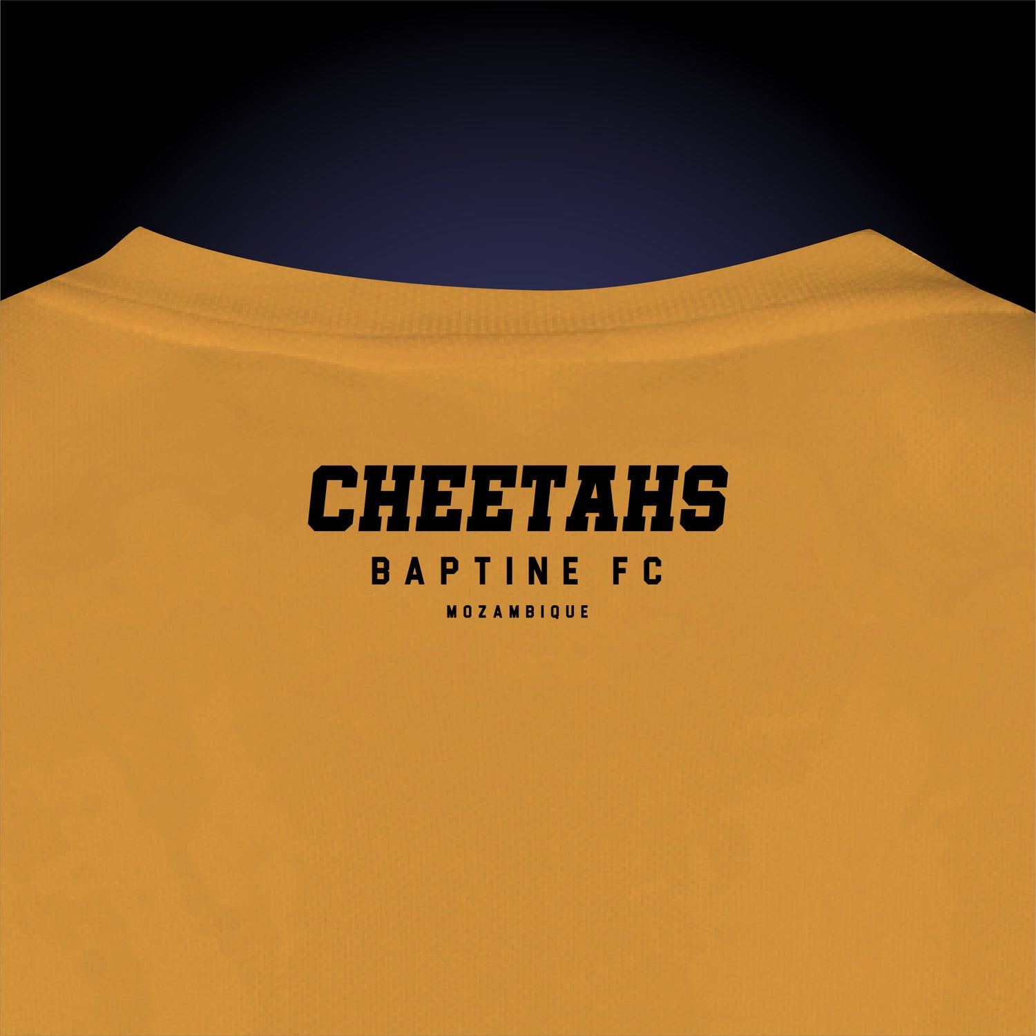 Image of Cheetahs Unofficial Replica Jersey