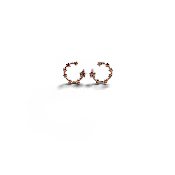 Image of Rose Gold Crescent Star Earrings