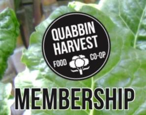 Image of Lifetime Membership