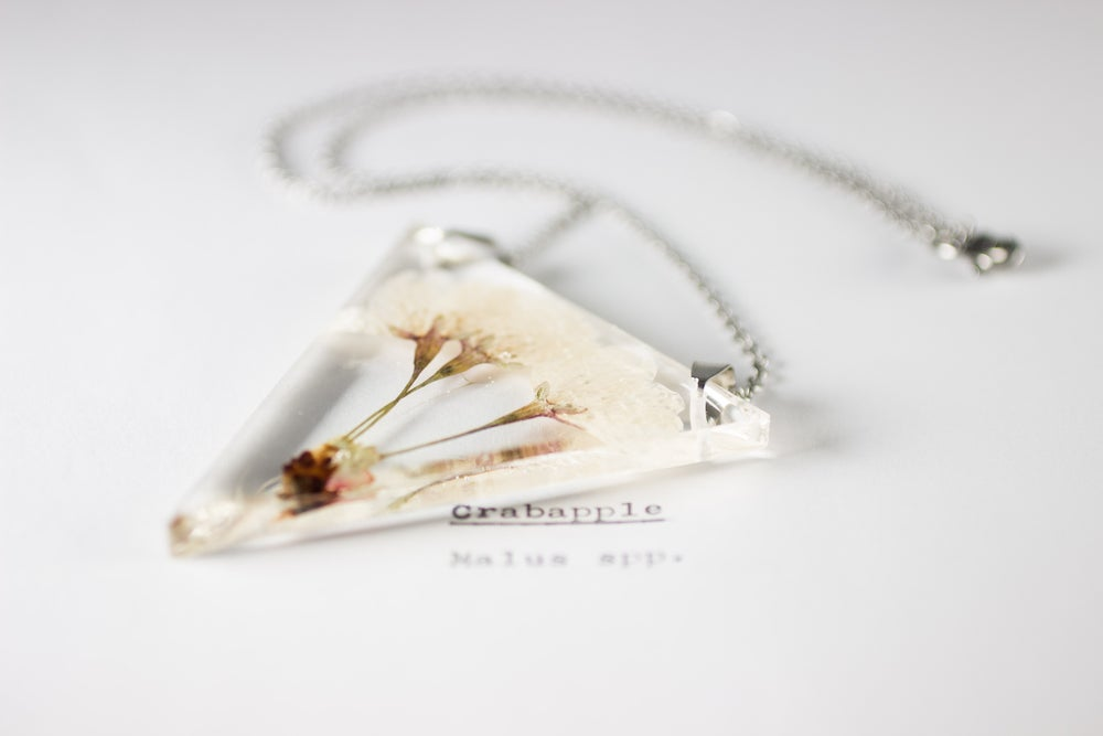 Image of Crab Apple (Malus) - Triangular Pressed Pendant #6