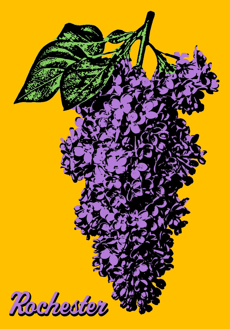 Image of Rochester Lilac Sticker