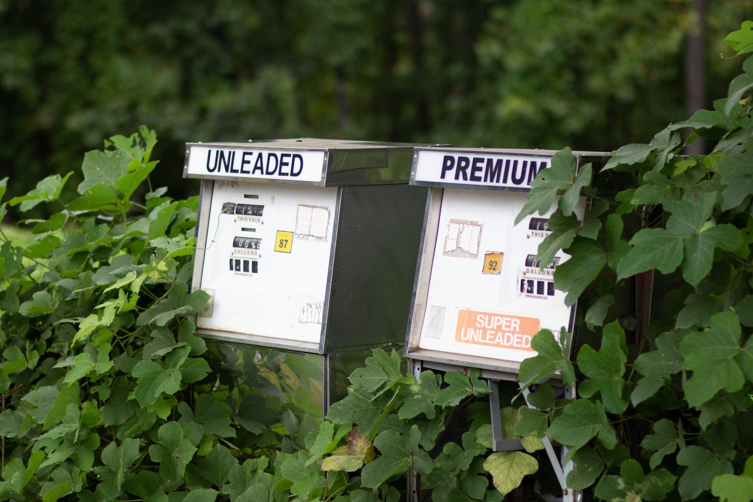Image of Abandoned Gas Pumps 3