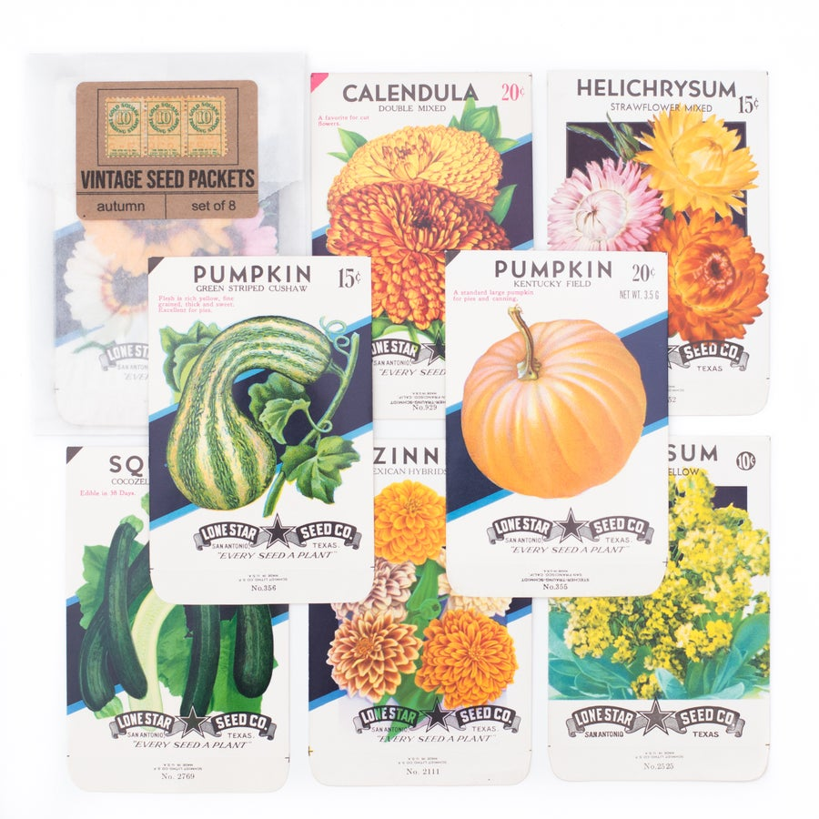 Image of Vintage Autumn Seed Packets - Set of 8