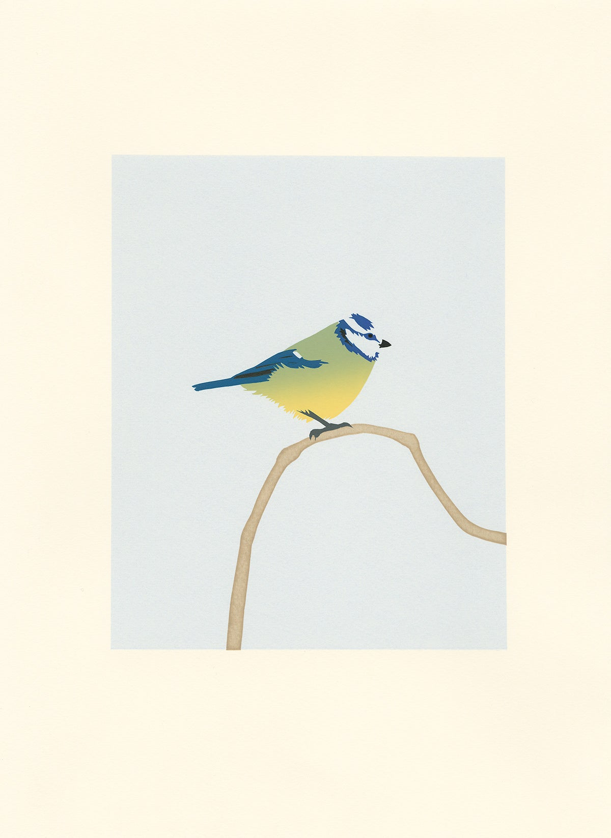 Image of Blue Tit Screen Print