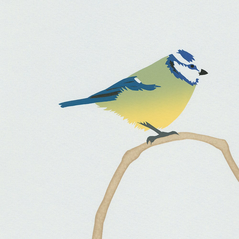 Image of Blue Tit Screen Print