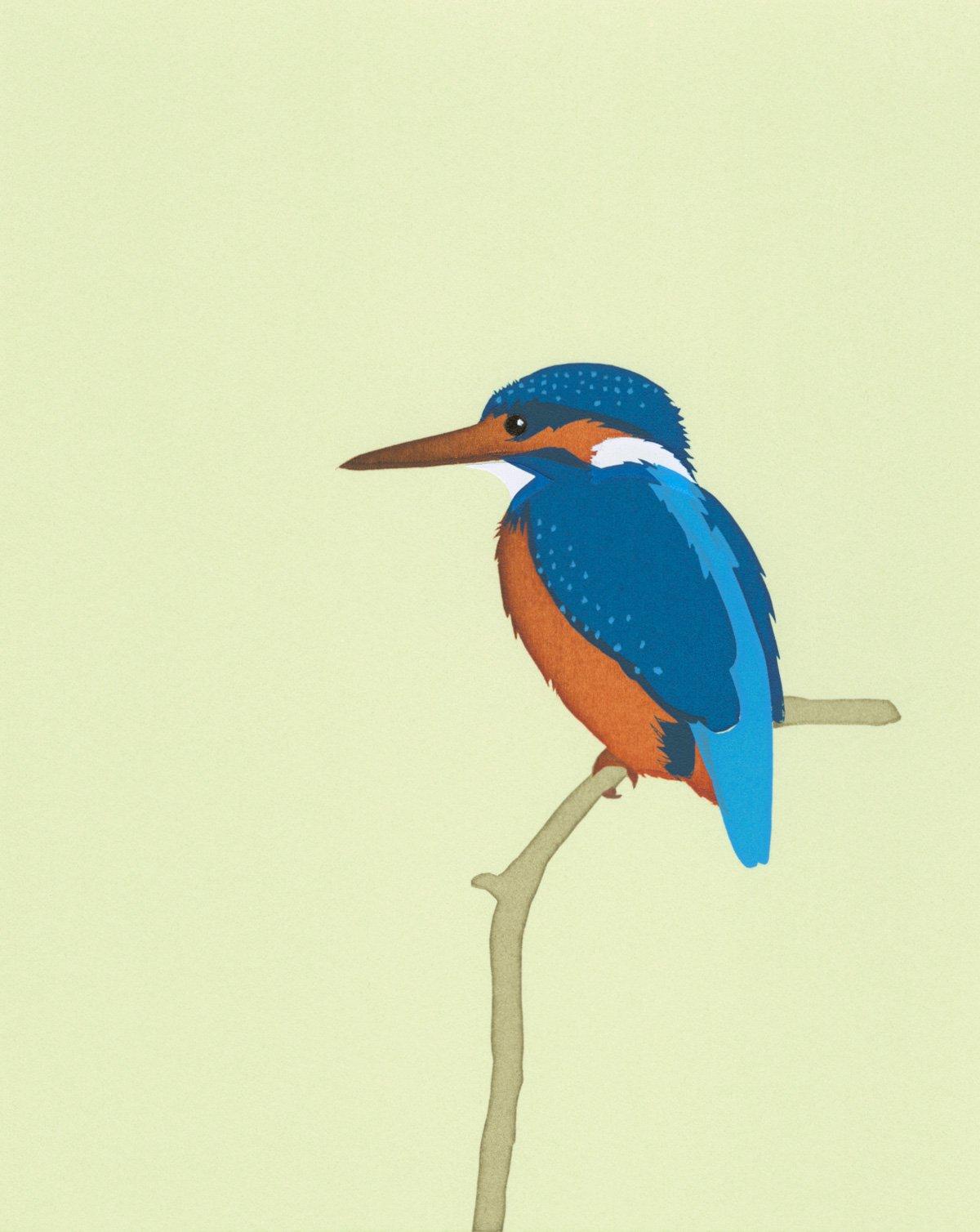 Image of Kingfisher Screen Print