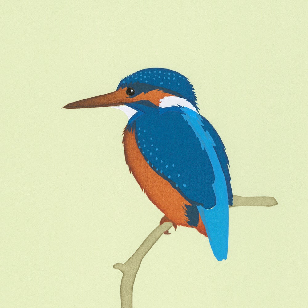 Image of Kingfisher Screen Print