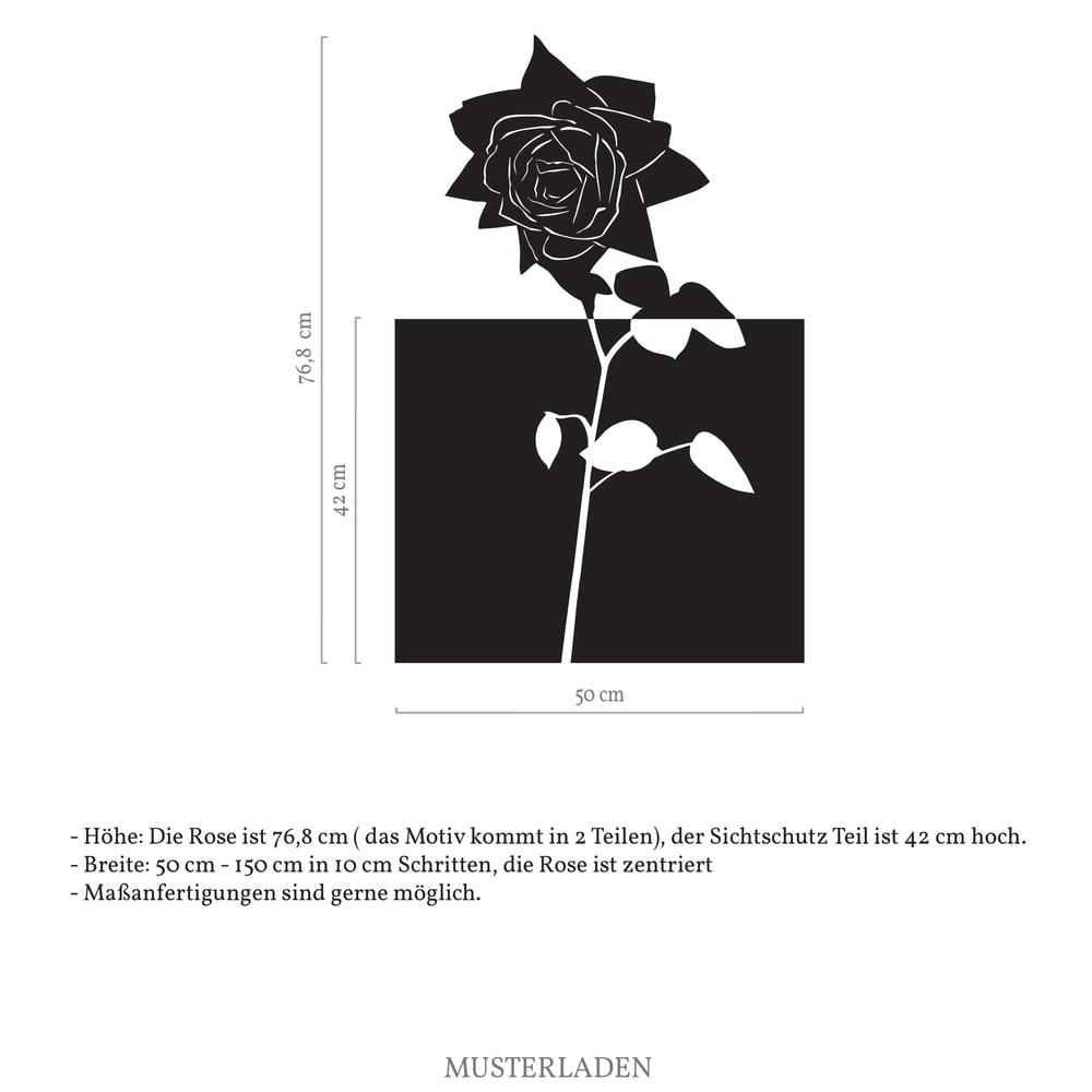 Image of Fensterfolie mit Rose, Sichtschutz floral selbstklebend