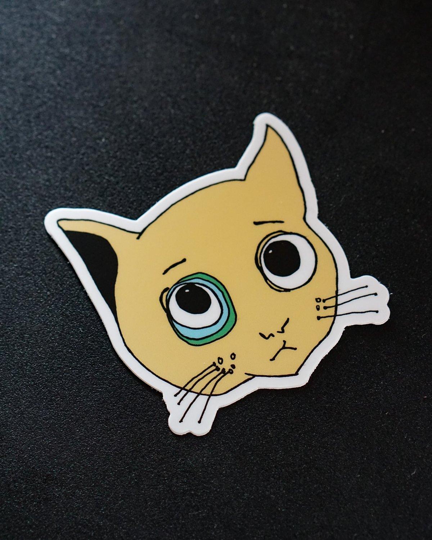 Mocha Cat