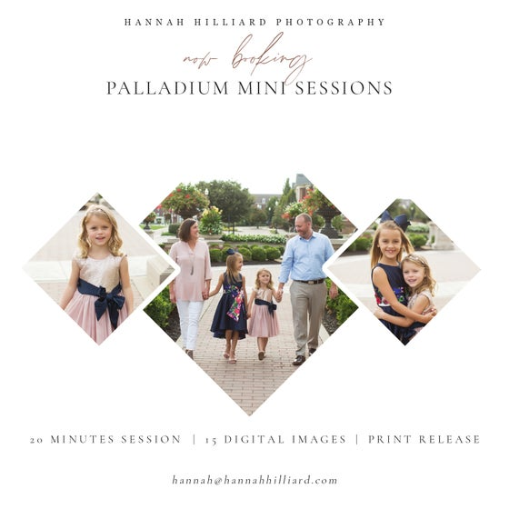 Image of Palladium Mini