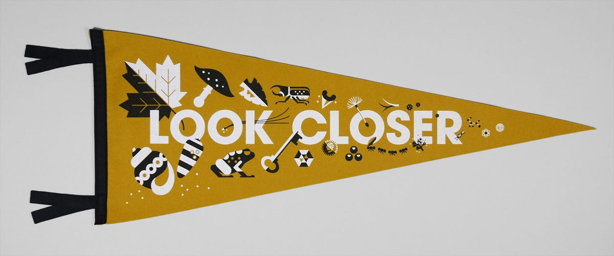 Image of Look Closer Pennant