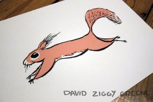 Red Squirrel (Charity item)