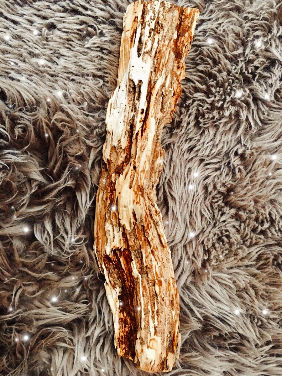 Image of Giant Palo Santo Log (ethically sourced)