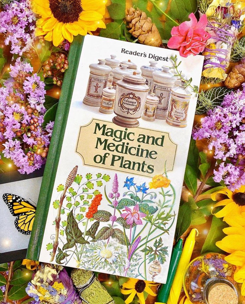 Image of Magic and Medicine of Plants - Vintage Book