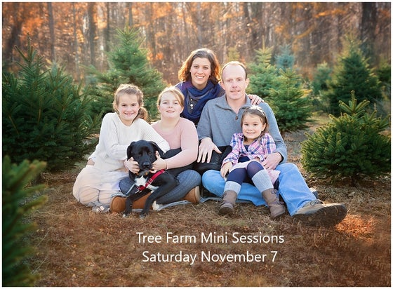 Image of Saturday, Nov 7 - Tree Farm Holiday Sessions
