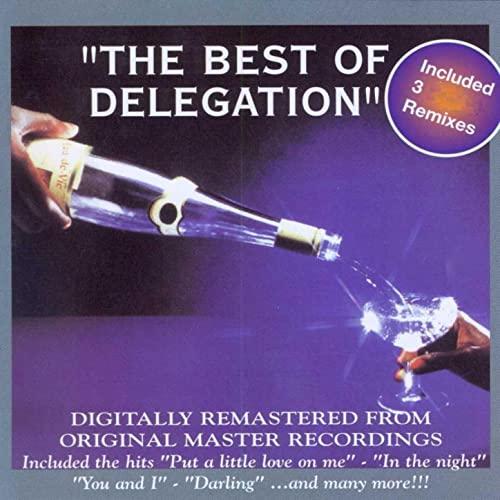Image of COM1031-2 // THE BEST OF DELEGATION
