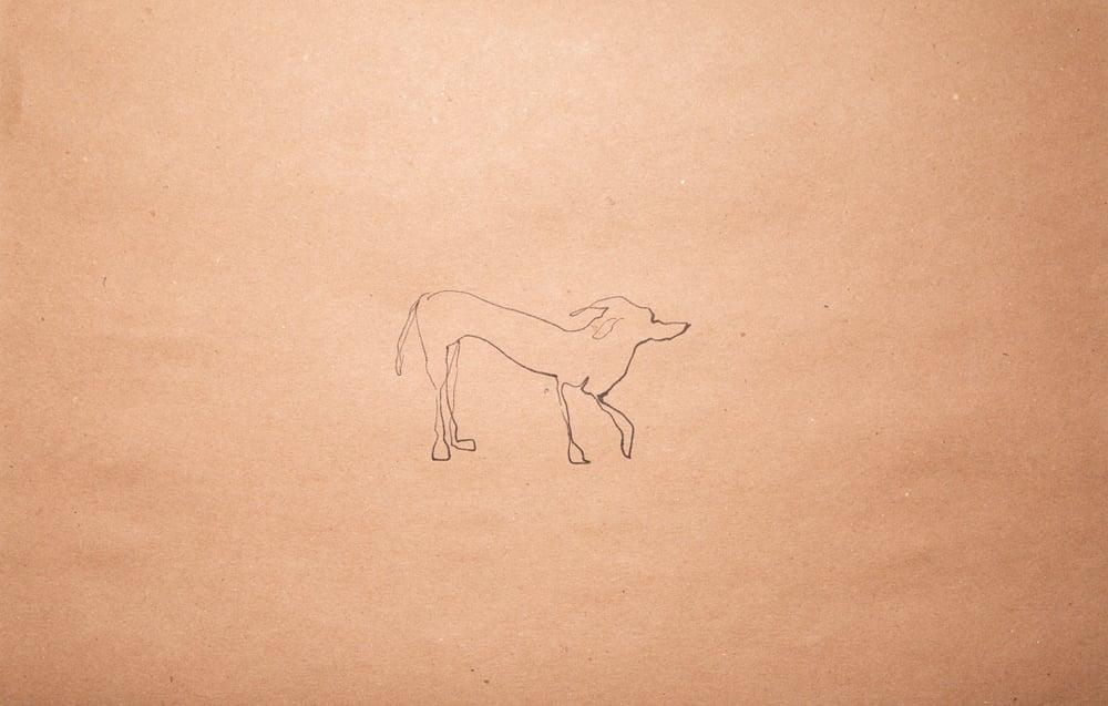"""Image of """"Los perros están de vuelta"""" Robert Majenti"""