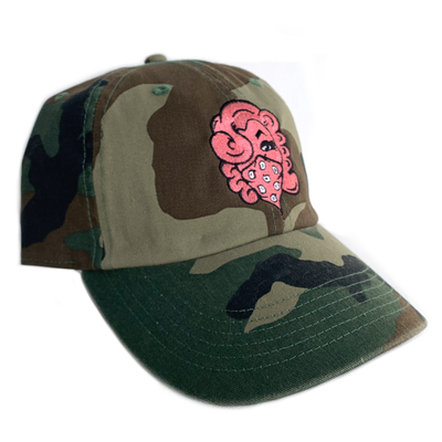 Image of CAMO/ SALMON