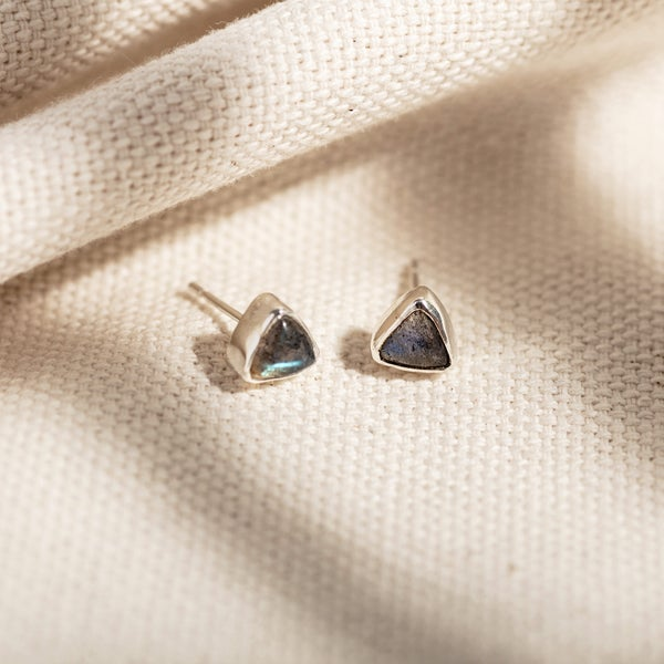 Image of  Trillion Labradorite Earrings