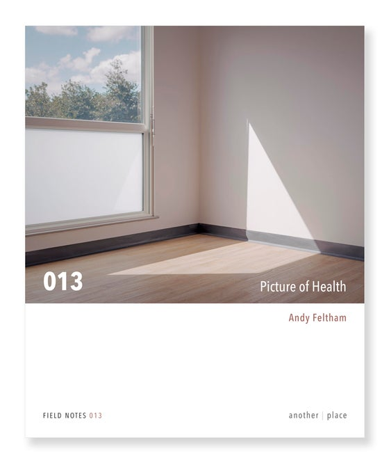 Image of Picture of Health - Andy Feltham