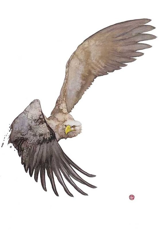 Image of KARL MARTENS - 'WHITE TAILED EAGLE' - LITHOGRAPH - SIGNED