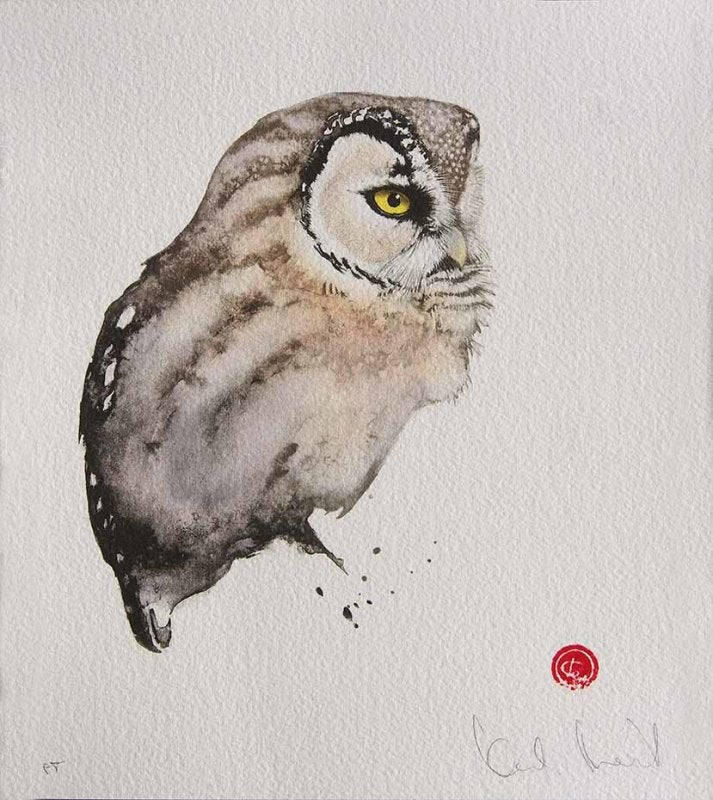 Image of KARL MARTENS - 'TENGMALM'S OWL - LITHOGRAPH - SIGNED