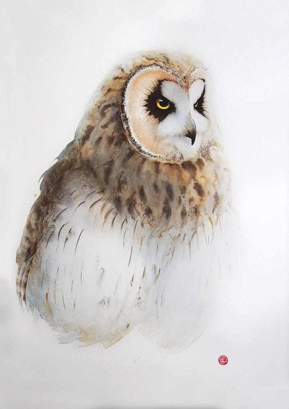 Image of KARL MARTENS - 'SHORT EARED OWL' - LITHOGRAPH - SIGNED