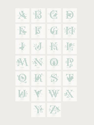 Image of Alphabirds Letters