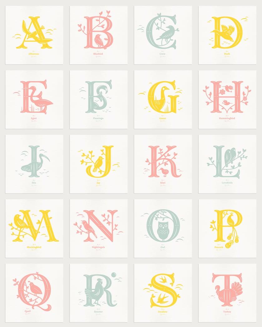 Alphabirds Letters