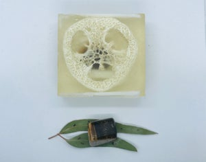 Tiger's Eye Soap with Loofah